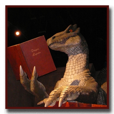 dragon reading, reading,