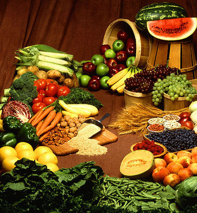 food, food from plant sources, vegetarian food