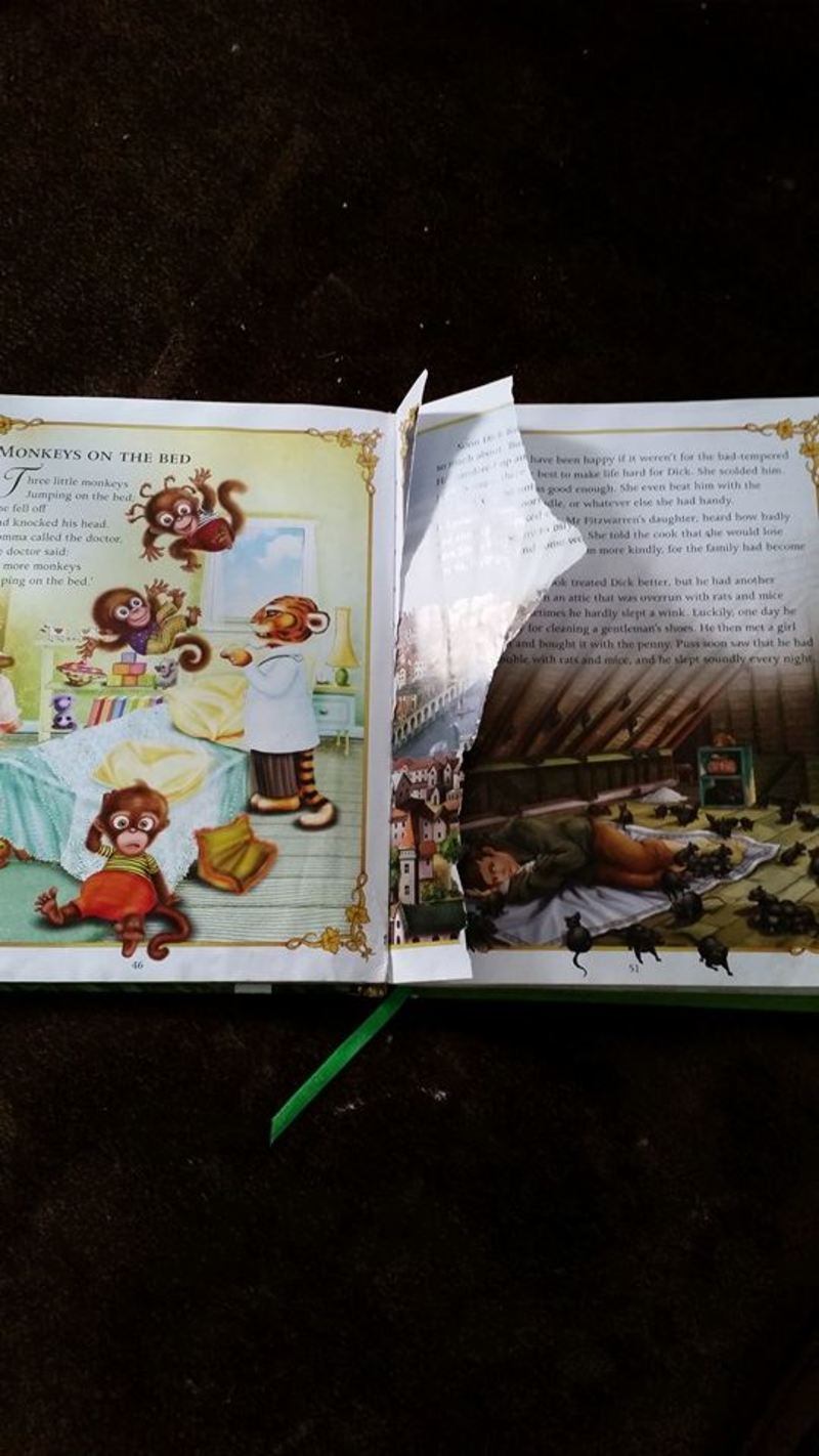 Do your children rip book pages? - Comfy Chair